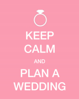 PLAN-A-WEDDING-480x600